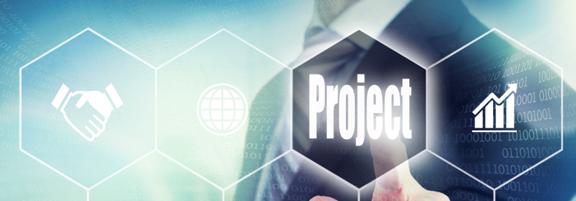 Enterprise Project Controls Solutions